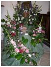 flowers14 2009