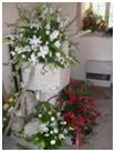 flowers22 2009