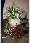 flowers24 2009
