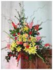 flowers26 2009