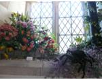 flowers30 2009